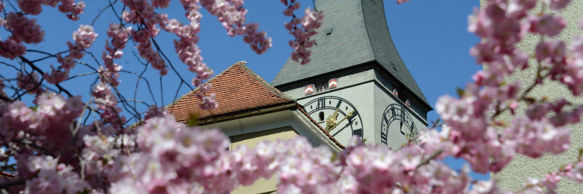 Martinskirche, Frühling, Kirchen